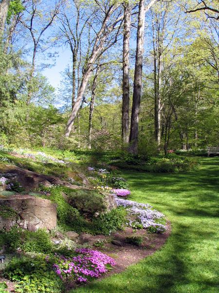 Leonard J Buck Garden, Spring