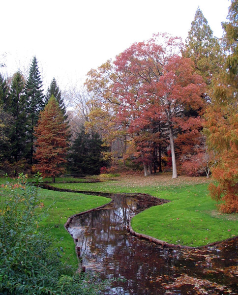 Leonard J Buck Garden, Autumn