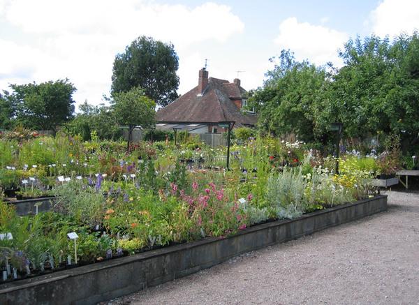 Nursery at Merriments Gardens