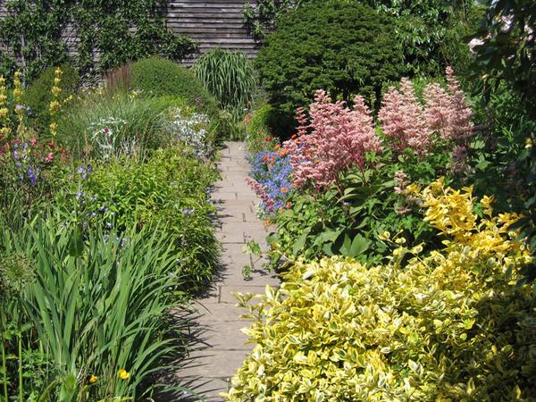 Sunk Garden, July 2008