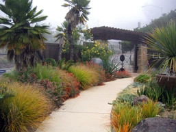 Garden Entrance, University of California Botanical Garden