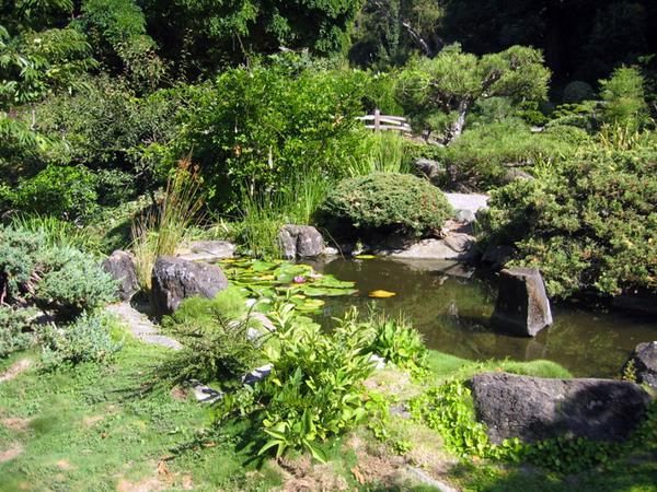 Hakone Gardens, California
