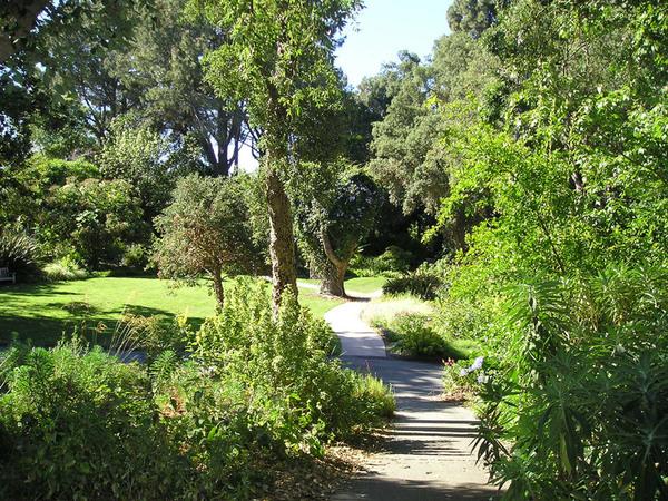 Quail Botanical Garden, California