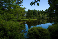 Medium asticou gardens maine original