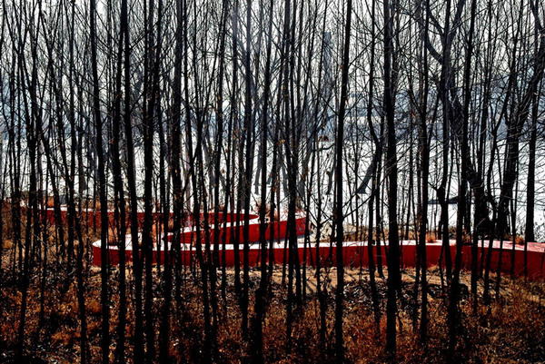 Forest, Tanghe River Park Red Ribbon