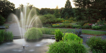 Fountain in the Perennial Garden