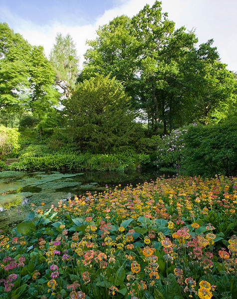 Torosay Castle Garden, Argyll