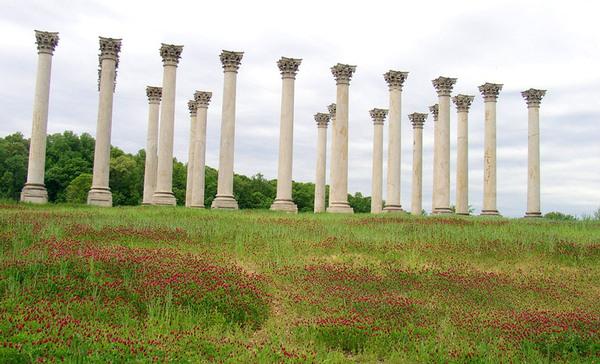 Capitol Columns, US National Arboretum
