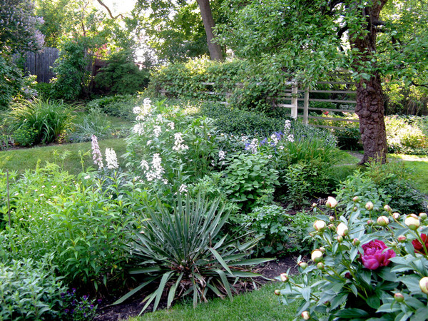 Moffatt-Ladd House Garden in June
