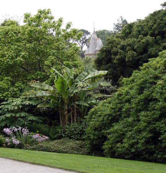 Trelissick Garden, Feock