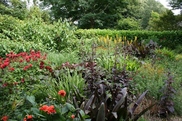 Bosvigo Garden, Truro