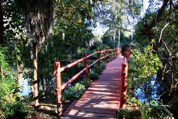 Bridge in Magnolia Plantation Gardens, South Carolina