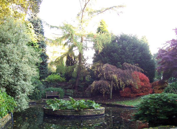 Pond, Wentworth Woodhouse Gardens