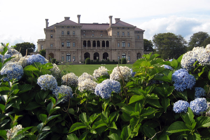 Hydrangeas, The Breakers Garden