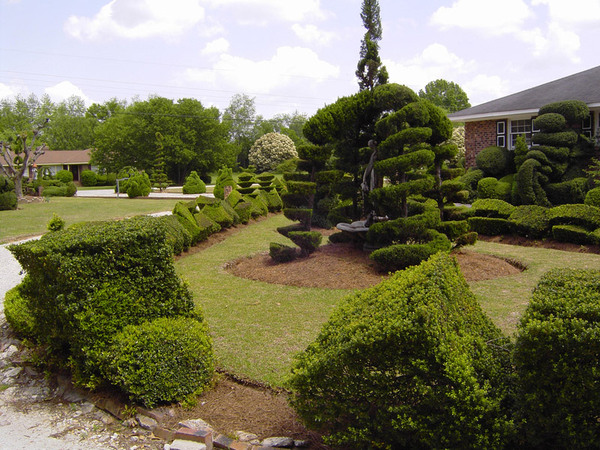 Pearl Fryar's Topiary Garden, Bishopville
