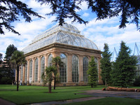Medium edinburgh botanic palmhouse original