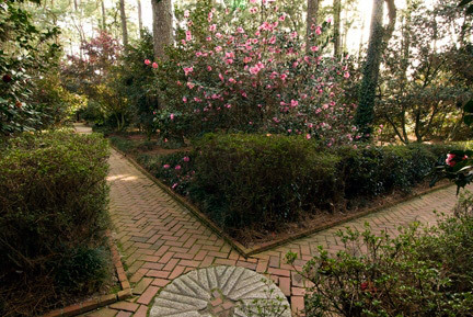 Massee Lane Gardens, Georgia