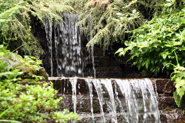 Dorothy Clive Garden, July 2008