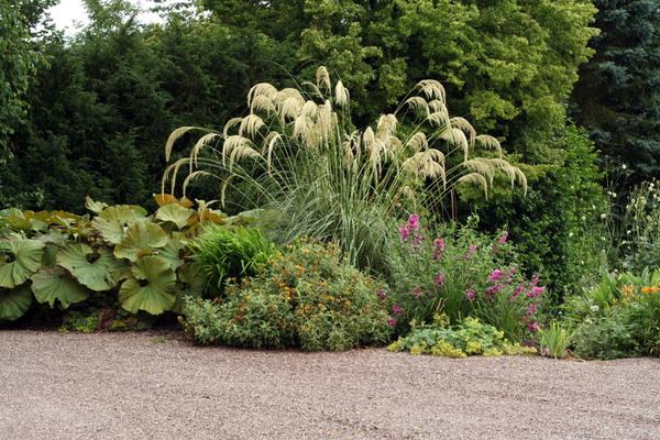 Dorothy Clive Garden, Summer 2008