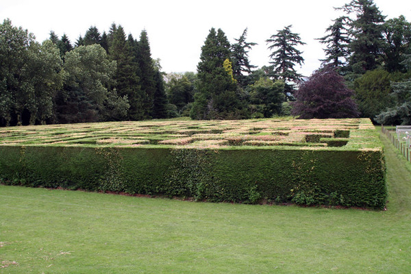 Maze, Traquair House Garden