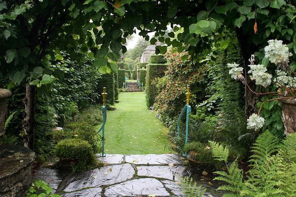 Plas Brondanw Gardens, July