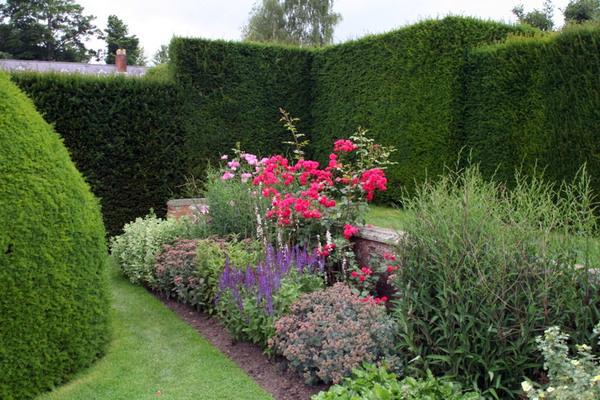Powis Castle Garden, Wales