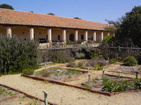 Medium la purisima mission garden original