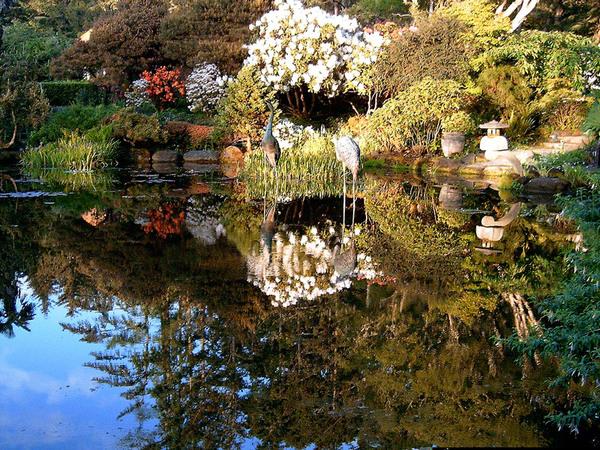 Shore Acres Gardens