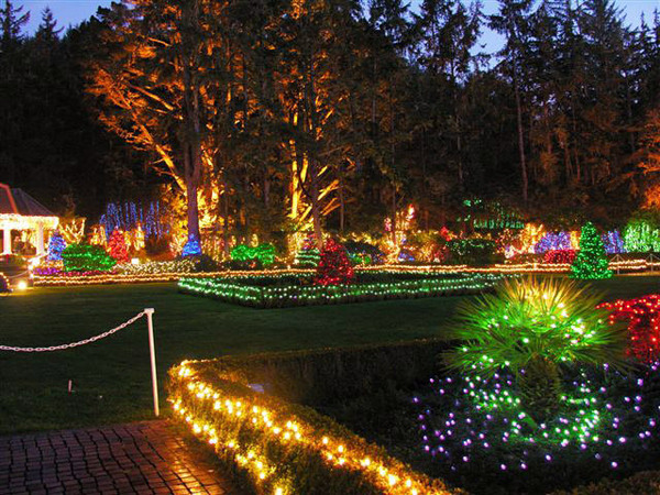 Holiday Lights, Shore Acres Gardens