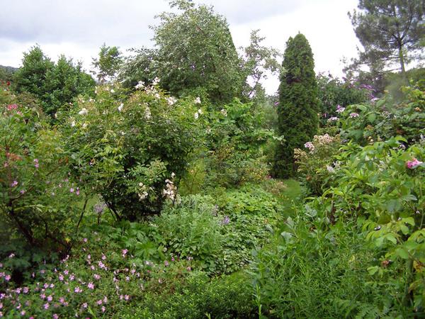 Jardin Mas de l'Abri, France