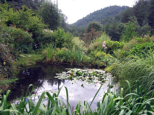 Pond, Jardin du Tomple