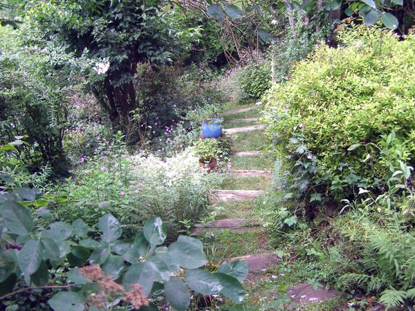 Steps, Jardin du Tomple