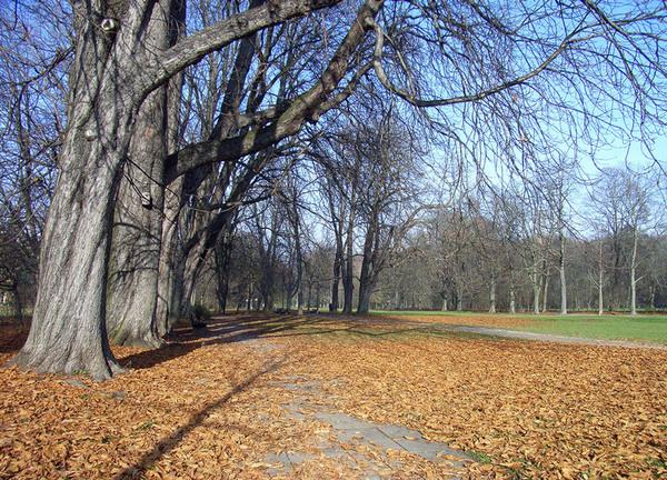 Luitpoldpark, Munich