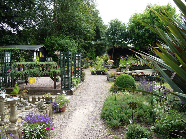 Stonyford Cottage Nursery, Cheshire