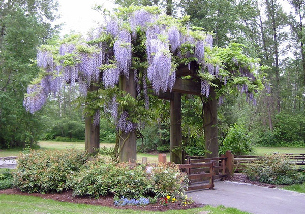East Gate, Bear Creek Gardens
