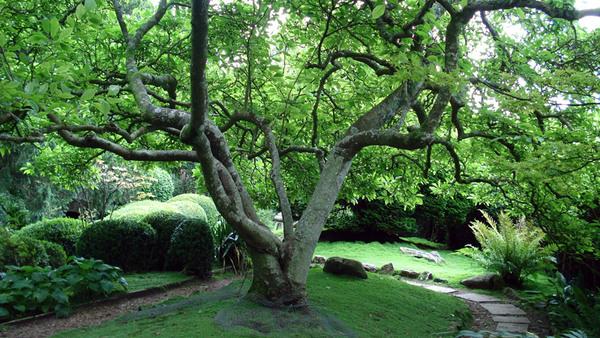 Kingston Maurward Gardens, Dorset