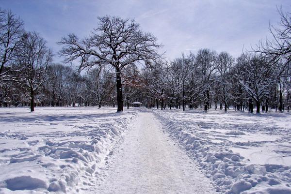 Snow, Hirschgarten