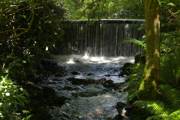 Parc Glynllifon, Wales