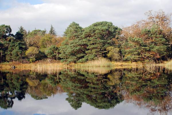 Muckross Lake, County Kerry