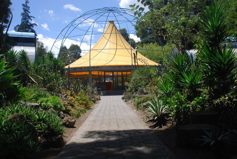 Quito botanical gardens jard n bot nico de quito for Hotel jardin botanico