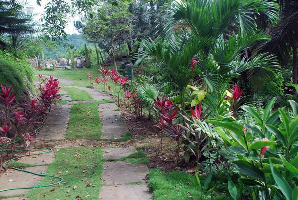 Guayaquil Botanic Gardens, Ecuador