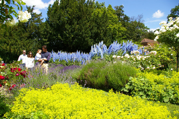 Spencers Garden