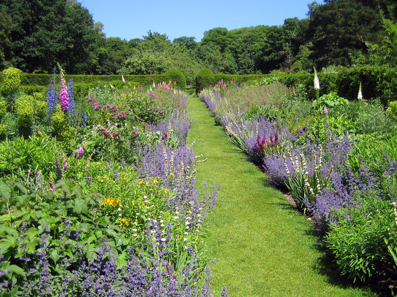 Herbaceous Border, Mottistone Manor Garden