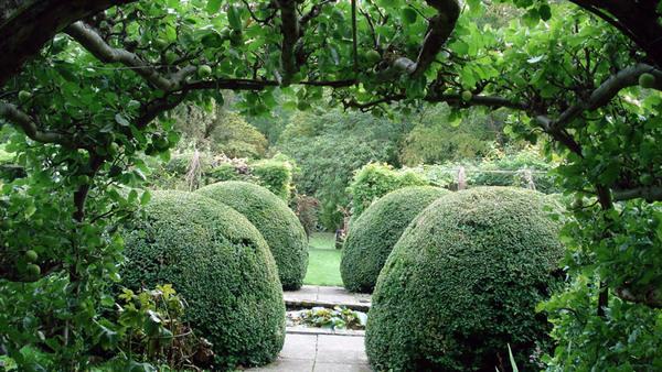 Heale House Garden