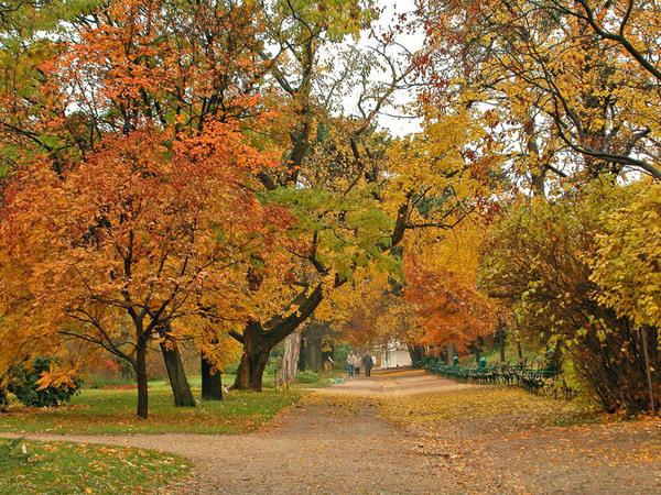 Autumn, Botanical Garden of the University of Vienna