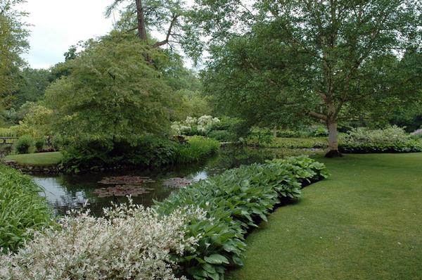 Longstock Park Water Gardens, Hampshire