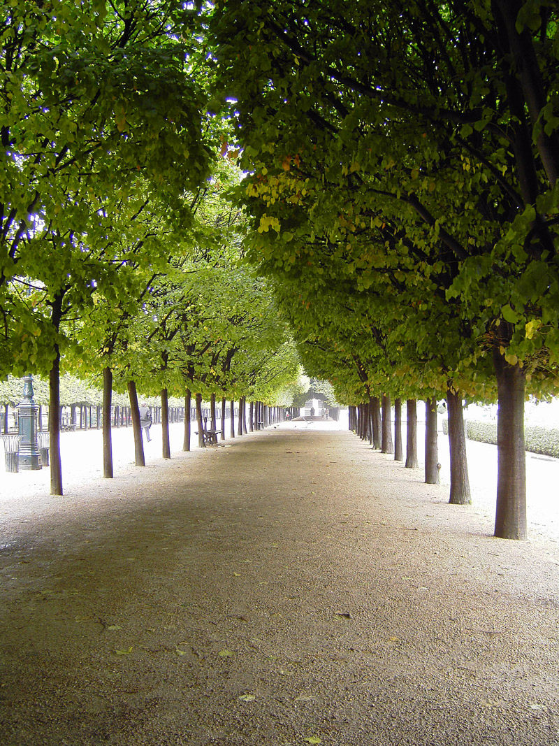 Avenue, Palais Royal