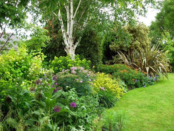 The Bay Garden, June 2008