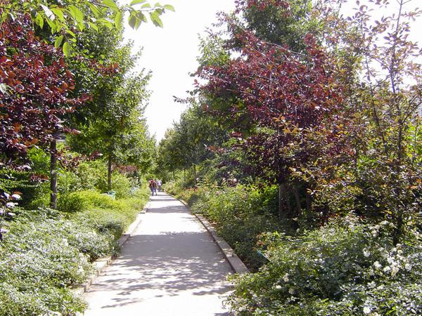 Promenade Plantee, August