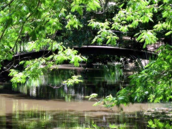 Mynelle Gardens, Mississippi
